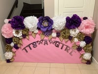 """It's a girl"" baby shower backdrop  Coquitlam, V3K 2X8"