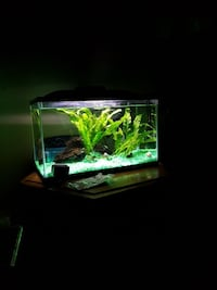 black frame fish tank London, N5Z 3J1