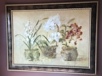 Picture- orchids  Omaha, 68112