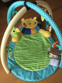 Activity mat with musical parrot Georgetown, L7G 1X6