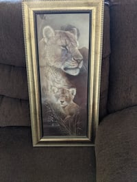 Mother lion and cub picture and frame