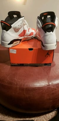 "Jordan 6 Retro ""Gatorade Like Mike"" Alexandria"