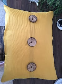 Throw pillow and blanket  Tullahoma, 37388