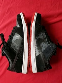 "Nike dunk low premium sz 10 VNDS OG ALL ""snake eyes"" New York"