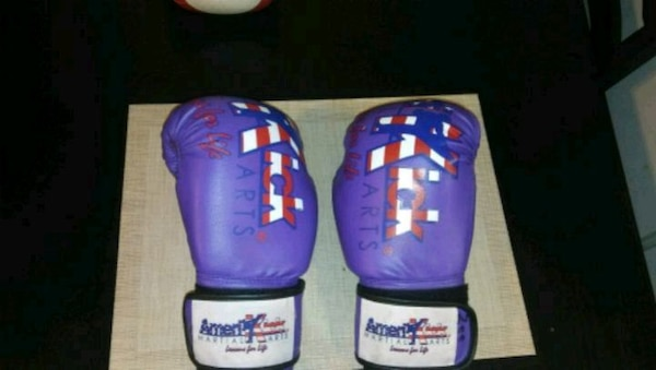 Boxing Gloves Fight Punch Bag Muay Thai Kickboxing
