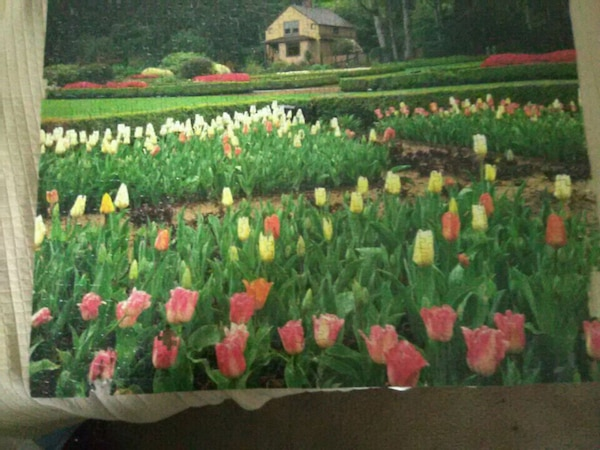 green and pink floral textile