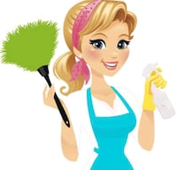 N & V Eco Cleaning Richmond Hill