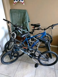 two blue and black BMX bikes Phoenix, 85015