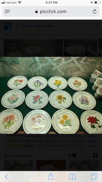 Domestications flower plate of the month  Parkville, 21234