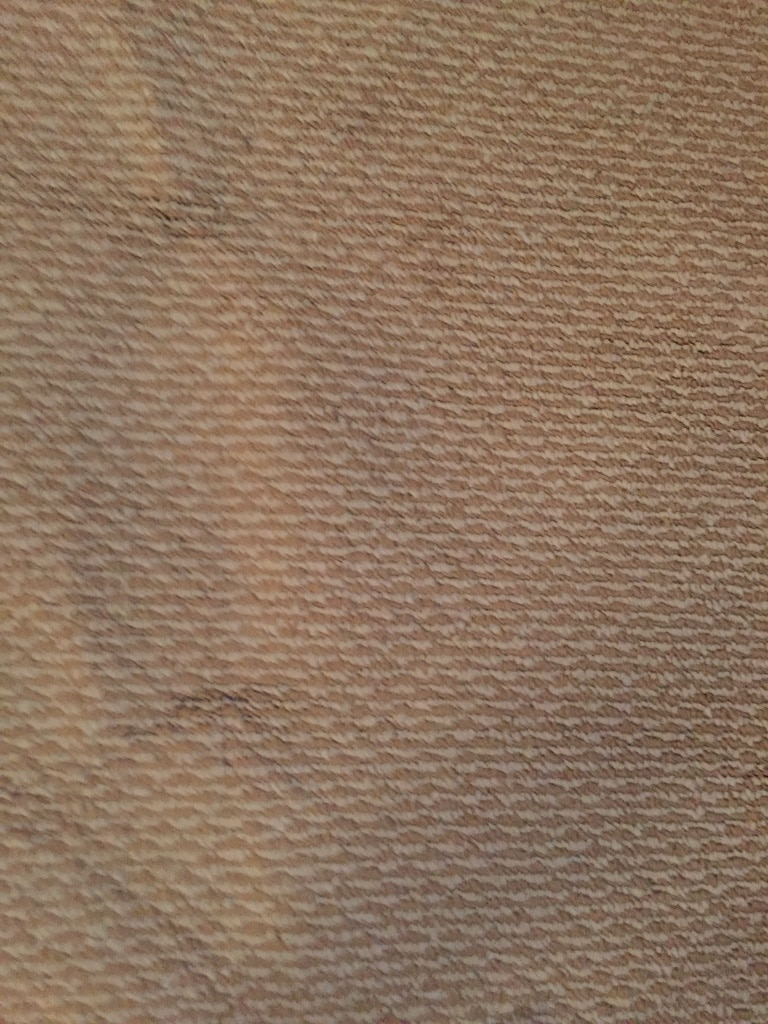Carpet, 53x87 inches, honey colored