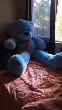 5ft blue teddy Orangeville, L9W 2E8