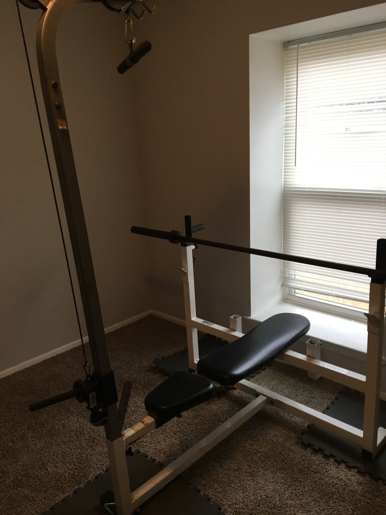 Parabody Serious Steel Bench And Attachments