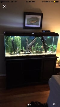 Aquarium with Stand and All Supplies