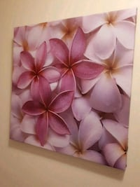 pink and white flower painting Kamloops, V1S 1B4
