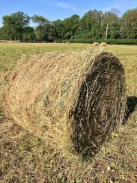 Fresh, Dry, Round Hay Bales 4' by 5' Fleetwood, 19522