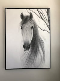 Horse picture dimensions 30 1/2 x 40  Westminster, 21157