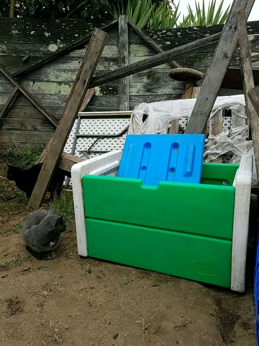 Storage Or Outside Toy Box
