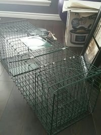 Cat, Small Dog, Racoon Trap
