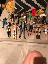 WWE characters VINTAGE and 1 mma fighter