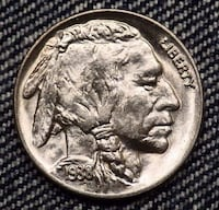 INDIAN HEAD BUFFALO NICKELS Thonotosassa, 33592
