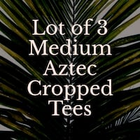 Lot of 3 Cropped Tees Stephens City, 22655