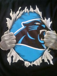 Panthers shirts all sizes Norfolk, 23523