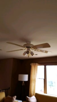 Fan/light fixture