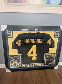 Jim Harbaugh signed jersey with COA