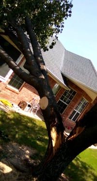 Tree services/ storm damage repairs Oklahoma City