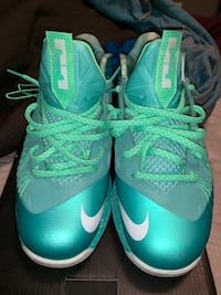 "Lebron 10 Low ""Easter"" Size 12 3 mi"