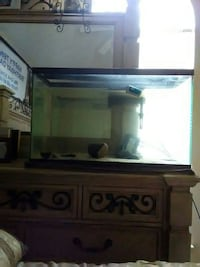 clear glass pet tank Hampton, 30228