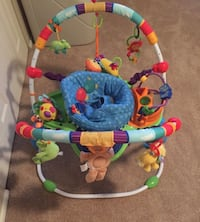 Baby's multicolored jumperoo Olney, 20832