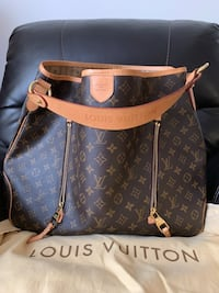 Louis Vuitton delightful GM Falls Church, 22043