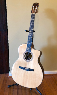 Taylor Classical Electric Guitar NS24ce Leesburg
