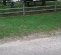 Small yard lawn care service D'Iberville