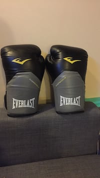 pair of black-and-gray Everlast boxing gloves Calgary, T3M 1A8
