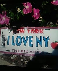white, blue, and red I Love NY car license plate Fort Myers, 33907