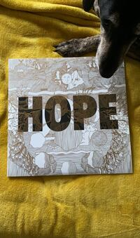 "Manchester Orchestra acoustic ""Hope"" vinyl Watertown, 02472"