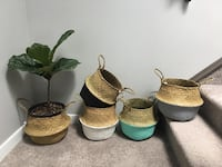 Seagrass baskets  Calgary, T3M 2C6
