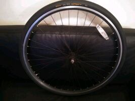 Bike rims and tire