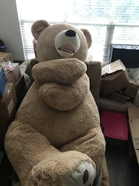 Giant Life Sized Teddy Bear Rockville, 20850