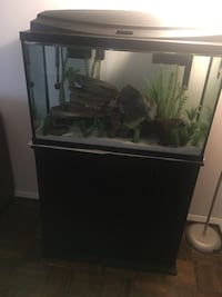 black framed clear glass fish tank Falls Church, 22043