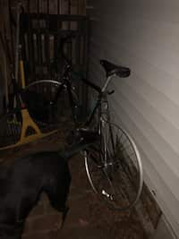 Used item for sale posted by Jose E Castro in Williamstown