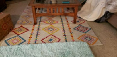 2 large area rugs clean