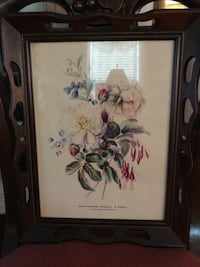 Beautiful!! Vintage Victorian Flower Picture Gainesville, 20155