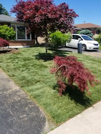 Landscaping Newmarket