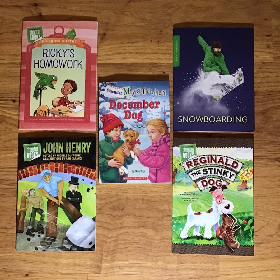 Kid's book lot