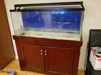 rectangular clear glass pet tank with black frame Springfield