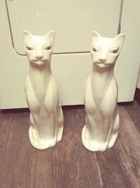 White cats for with green eyes New Carrollton, 20784