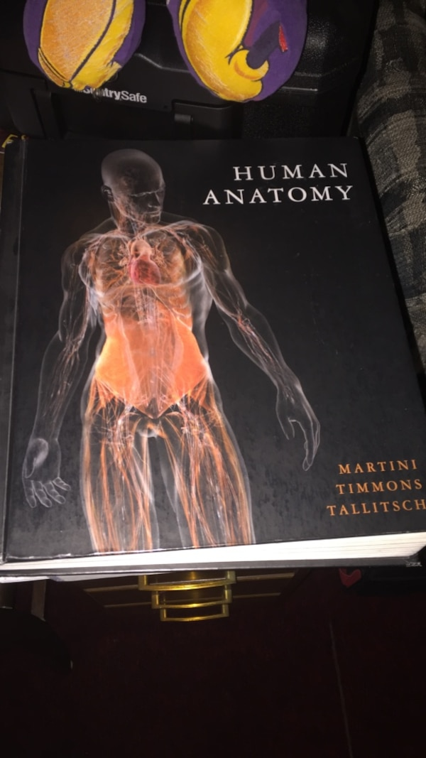 Used Human Anatomy By Martini Timmons Tallitsch For Sale In